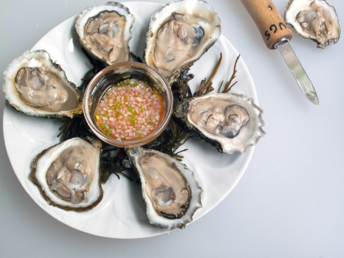 oysters_2563