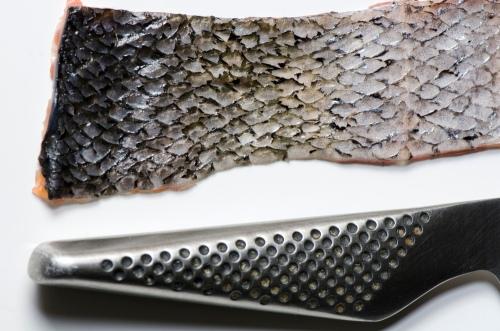 Salmon_9233
