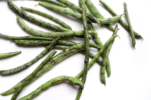 Dragon_Tongue_Beans_DSC_1530
