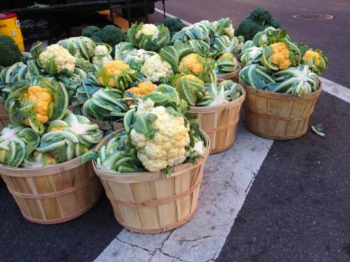 Cauliflower_IMG_3016