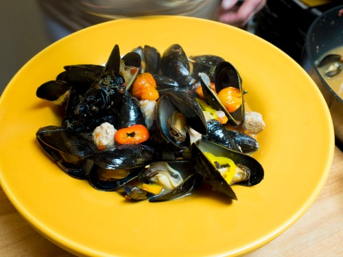 Mussels plated