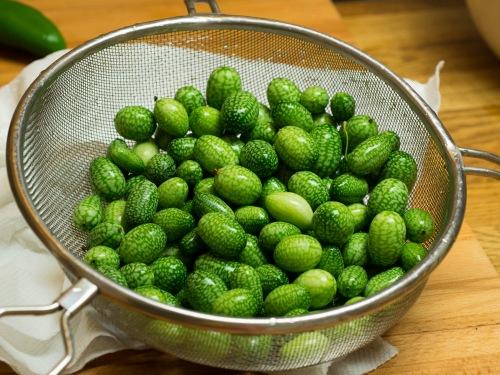 sanditas pickles