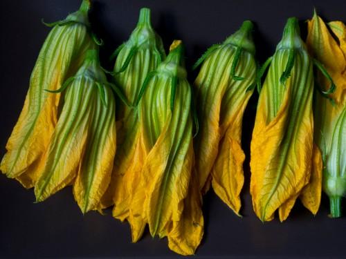 stuffed-zucchini-blossoms
