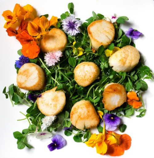 Fancy Scallops