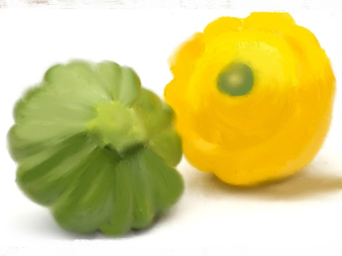 PattyPan©StephenKolyer