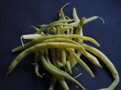 yellow-wax-beans