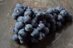Thomcord_Grapes_DSC_6605